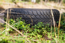 An Old Car Tire Left In The Forest. Littered With The Natural Environment.