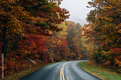 Fall color along the Blue Ridge Parkway in Virginia. Canvas Print