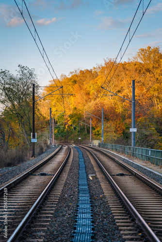 Light rail tracks and autumn color in baltimore maryland buy light rail tracks and autumn color in baltimore maryland aloadofball Images