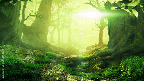 Poster Zwavel geel path through magical forest at sunrise, beautiful old trees fantasy landscape
