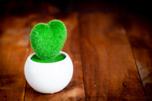 Heart Tree On Wood Table , Cop...