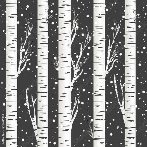 Fototapeta Winter background with birch trees and snowflakes obraz