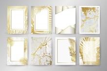Set Of Elegant Brochure, Card,...
