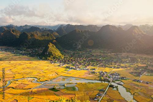 Foto auf Gartenposter Reisfelder Vietnam terrace rice field