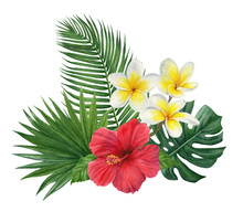 Hand Painted Watercolor Tropical  Bouquet: Monstera, Palm Leaves, Plumeria, Hibiscus