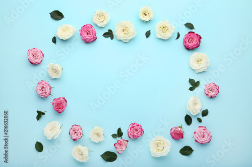 Pink and white rose flowers on blue background