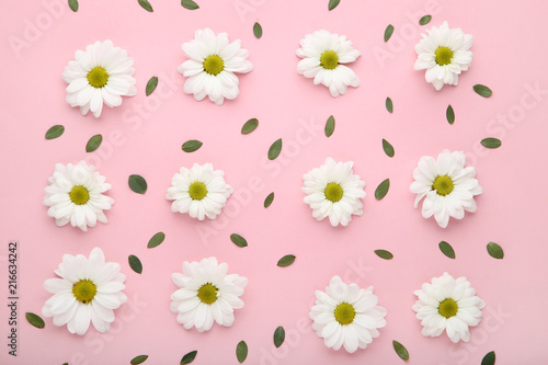 White Chrysanthemum Flowers With Green Leafs On Pink Background