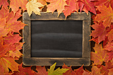 Fall Background With A Chalkbo...
