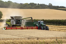 Combine Harvester Working In A...