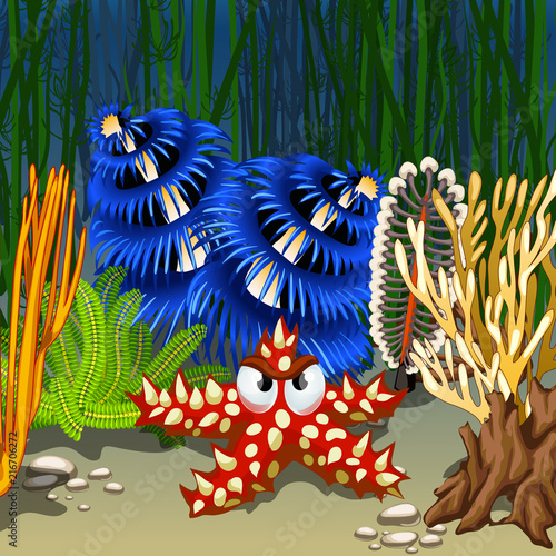 Foto op Canvas Bloemen vrouw Cartoon starfish red with prickly thorns on the seabed among corals and algae. Vector cartoon close-up illustration.