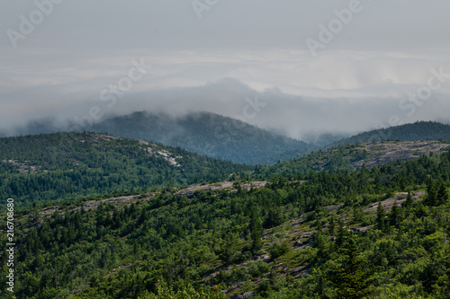 Fotobehang Bleke violet Foggy day from top of Cadillac Mountain, Maine,USA