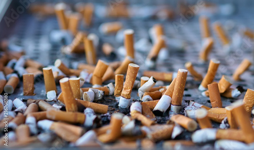 Fotografija  Cigarette butts, concept of dangerous and health harmful smoker lifestyle