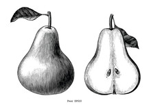Pear Fruit Hand Draw Vintage C...