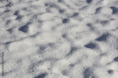 Fotografia  Undulating snow background with the occasional blade of grass showing though