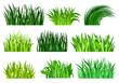 Flat vector set of different decorative grass borders. Bright green wild herb. Nature and botany theme. Natural landscape elements