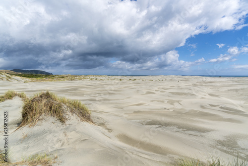 Sand dunes of Farewell Spit Nature Reserve. Puponga, Tasman district, South Island, New Zealand.