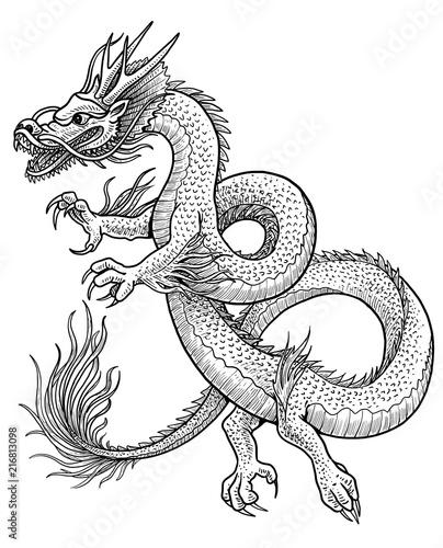 Asian Dragon Illustration Drawing Engraving Ink Line Art Vector
