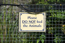 Do Not Feed Animals Sign On Fe...