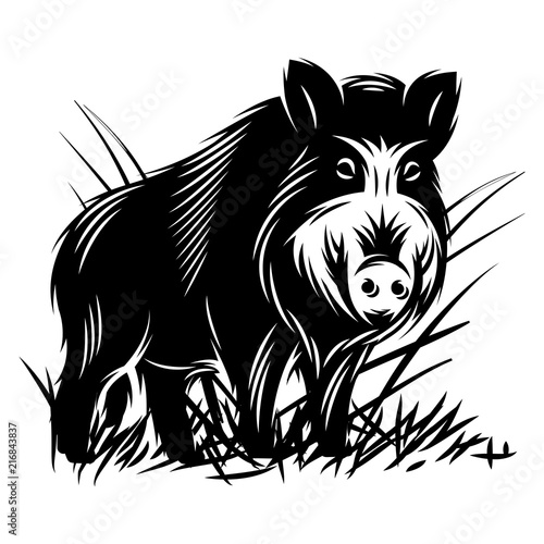 vector monochrome illustration with a wild boar in thicket of grass Poster Mural XXL