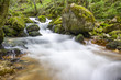 River of the Bigar Waterfall above the cascade Romania