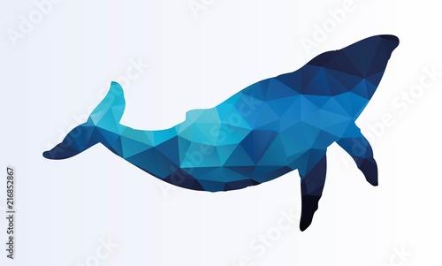 Naklejka premium Wieloboczny wieloryb