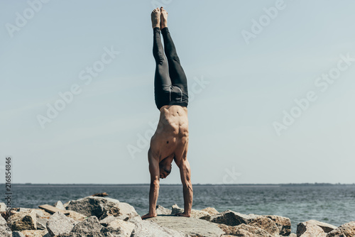 Obraz na płótnie sporty shirtless man doing handstand (adho mukha vrksasana) on rocky seashore