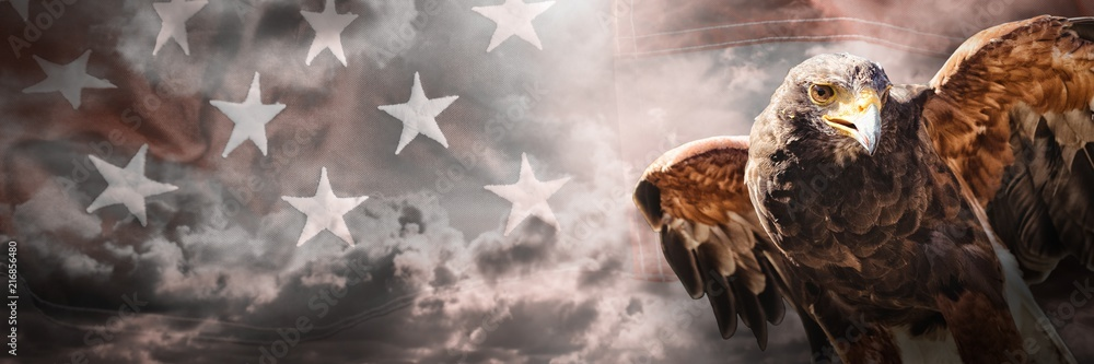 Composite image of eagle with spread wings