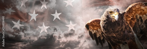 Fotografie, Obraz Composite image of eagle with spread wings