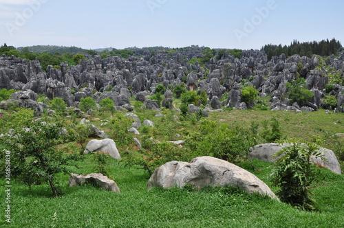 Staande foto Grijs Stone Forest. Shilin Park, China