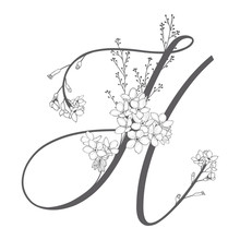 Vector Hand Drawn Floral H Monogram And Logo