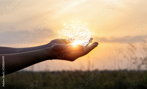 Hands support the brain in the sun . Wallpaper Mural