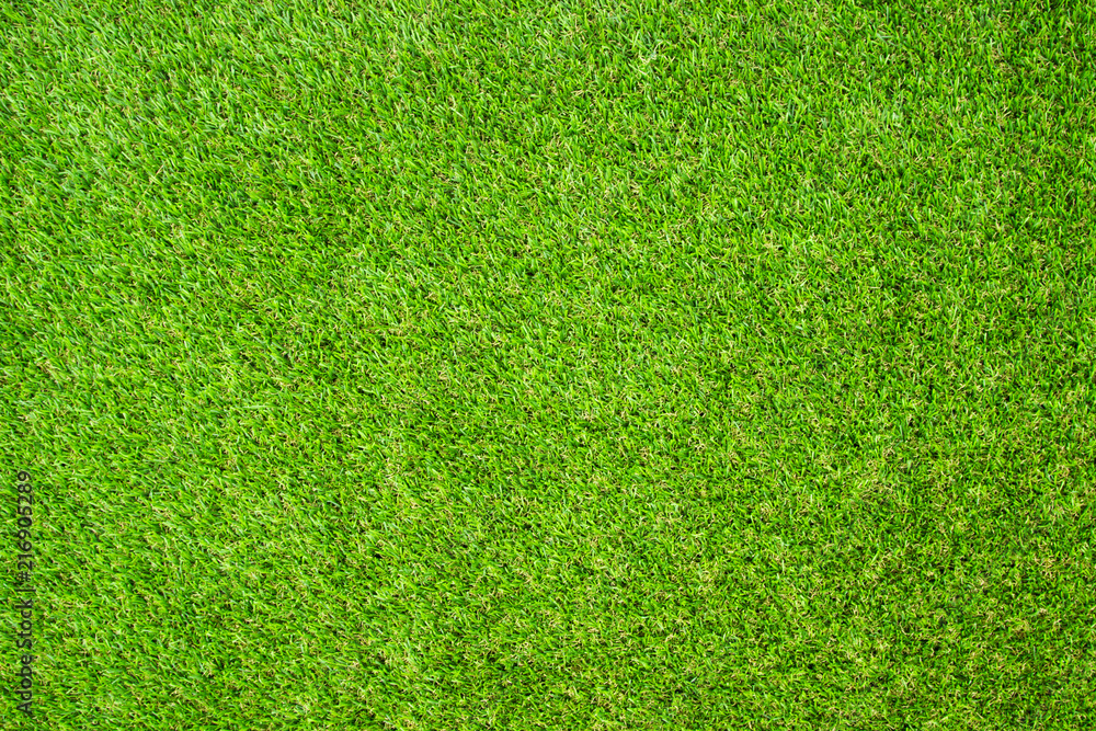 Fototapety, obrazy: Beautiful Green artificial grass background vignette or the naturally walls texture Ideal for use in the design fairly. natural pattern texture fresh spring from golf course or  soccer field.