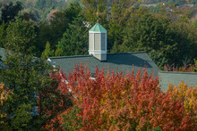 Green English Colonial Style Roof With Weather Vane. Autumn (fall) Season.