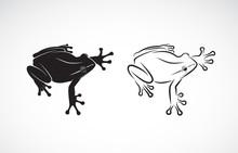 Vector Of Frog Design On White...