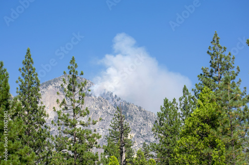 The white smoke rising to blue sky from forest fire during a controlled burn in Canvas Print