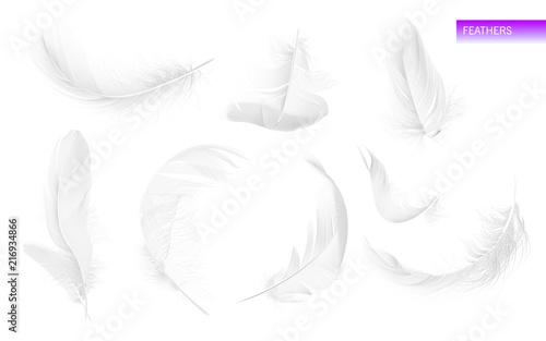Set of isolated falling white fluffy twirled feathers on white background in realistic style Canvas Print