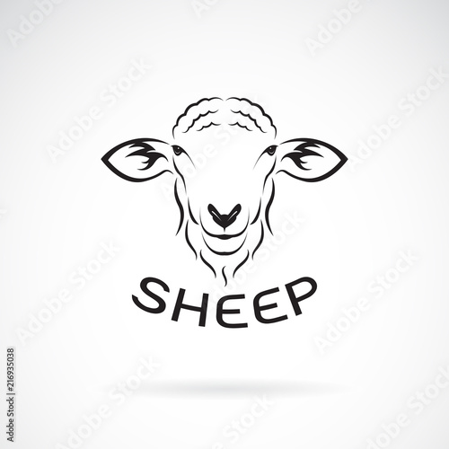 Valokuvatapetti Vector of sheep head design on white background