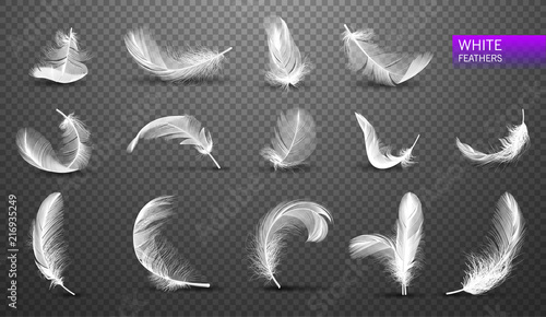 Valokuvatapetti Set of isolated falling white fluffy twirled feathers on transparent background in realistic style