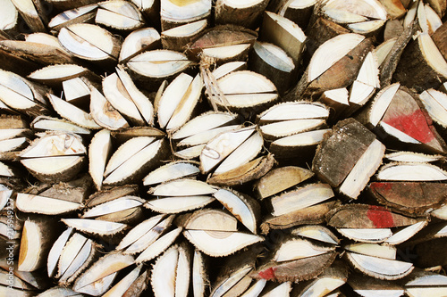 Firewood texture, after the sawing wood. background. photo