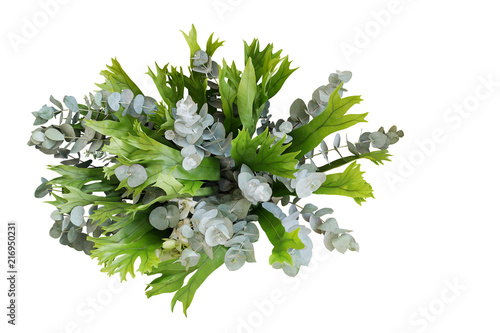 Bunch of climbing bird's nest fern and Silver Drop eucalyptus leaves, tropical foliages flower bouquet floral arrangement isolated on white background, clipping path included.