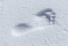 Humans Bare Foot Imprint In Wh...