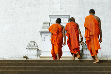 Monks Coming In Ruwanwelisaya ...