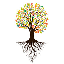 Autumn Silhouette Of A Tree With Colored Leaves. Tree With Roots. Isolated On White Background. Vector
