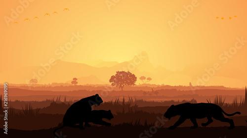 Foto Wild animals silhouette