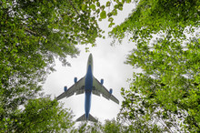 Big Blue Passenger Aircraft Delivers Passengers And Cargo, Lands In The Airport, Wide View Of Owerflying Above In A Hole Between Forest Trees In Front Of The Cloudy Sky Background