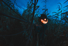 Scary Pumpkin Scarecrow In A Hat On A Cornfield In Cloudy Weather. Halloween Holiday Background