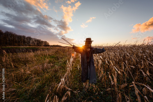 Photo Scary scarecrow in a hat on a cornfield in orange sunset background