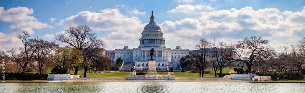 Fototapety, obrazy: US Capitol 8 (Banner)