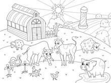 Farm Animals And Rural Landsca...