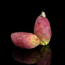 Two Indian Aka Barbary Figs, O...